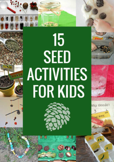 collection of seed activities for kids