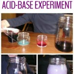 Purple Brew: Learning about Acids and Bases