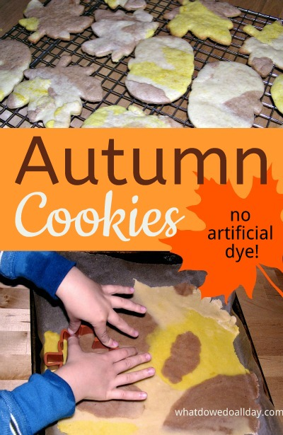 Colorful fall sugar cookies to make with kids