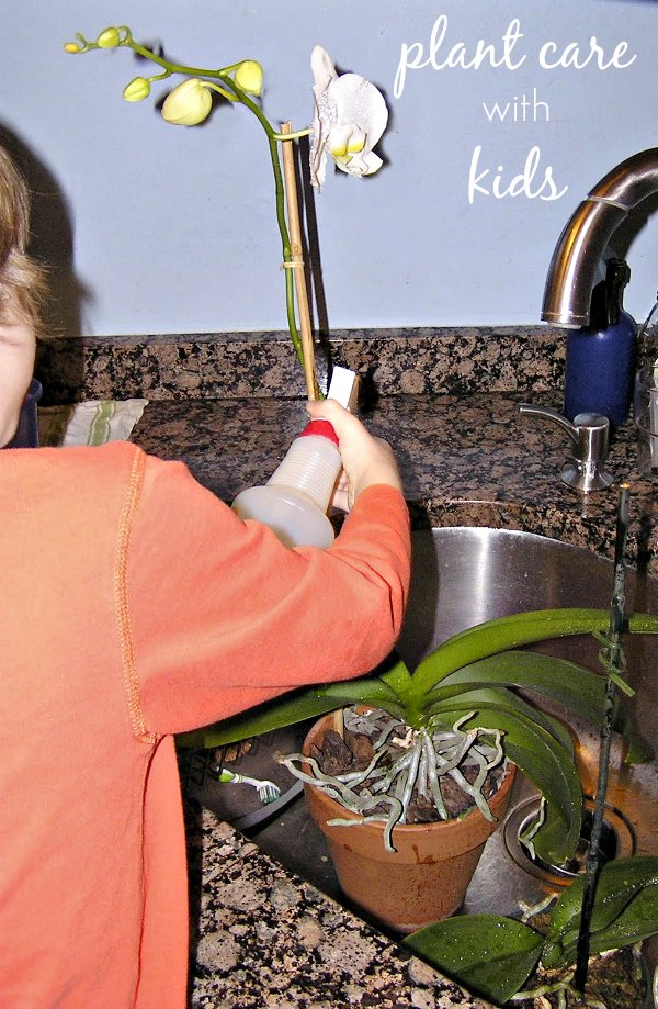 Teach kids practical life skills and responsibility through plant care.
