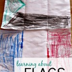 Keeping Busy: Learning about Flags