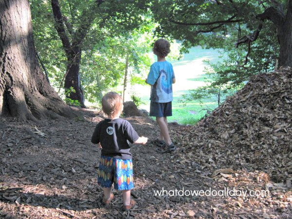 Exploring nature and throwing rocks over the hill