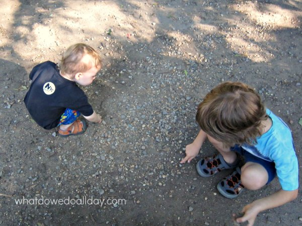 Collecting rocks and reading children's books about rocks