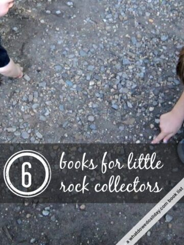 Kids who love rocks will love these books.