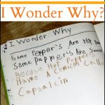 I Wonder Why – Recording Answers to Kids' Questions
