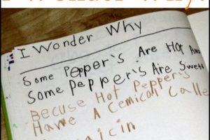 Kids record I wonder why questions in their journals to encourage inquiry