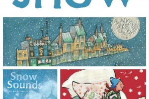 kid books about snow