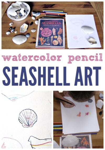 Seashell art project for kids with watercolor pencils