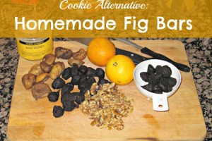 Cookie Alternative: Fig Bar Recipe