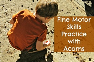 Kids can work on fine motor skills with acorns in the fall.