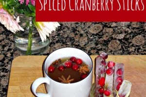 cool down too hot cider with cranberry ice sticks