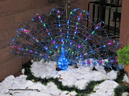 Outdoor Peacock Decoration