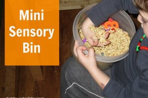 Mini Sensory Bin Play