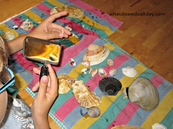 Shells and magnifying glass kid activity