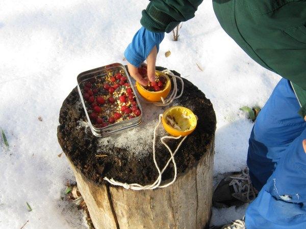 How to make an easy hanging orange bird feeder craft with kids