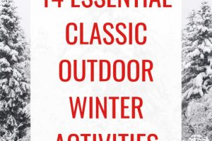 classic winter activities for families