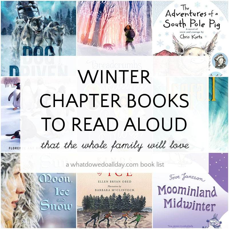 winter chapter books book cover collage