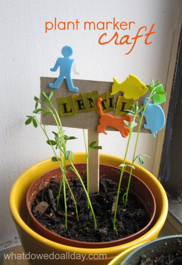 Plant Indoor Garden Indoor gardening activity kid made plant markers workwithnaturefo