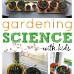 Plant Science Activity with Kids