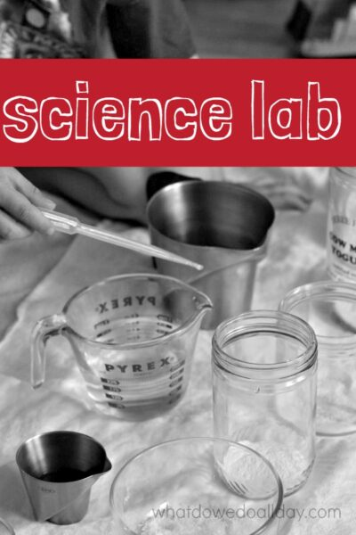 Set up a simple kids' science lab at home. Adaptable for kids of all ages.