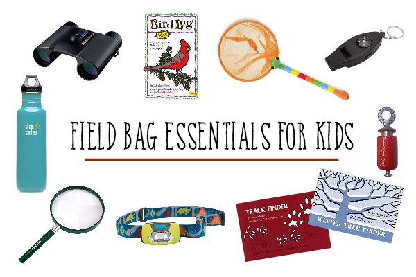 What to put in a child's field bag.