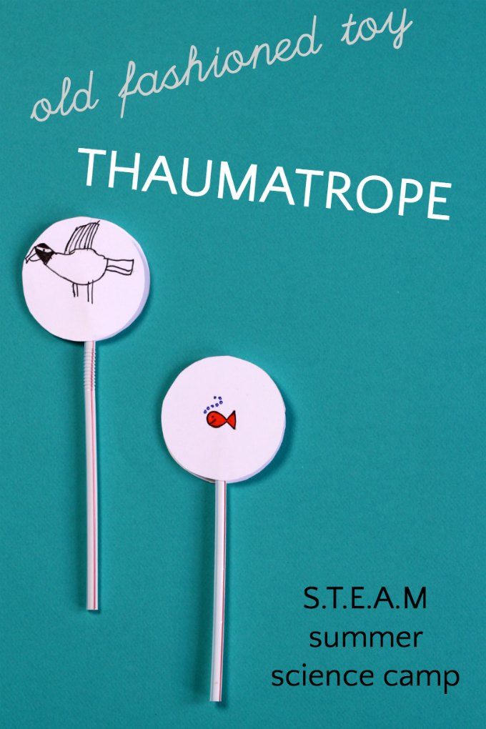 picture relating to Thaumatrope Printable identify Outdated University Pleasurable: Crank out a Thaumatrope