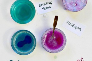 The Colorful Cabbage Juice Science Experiment