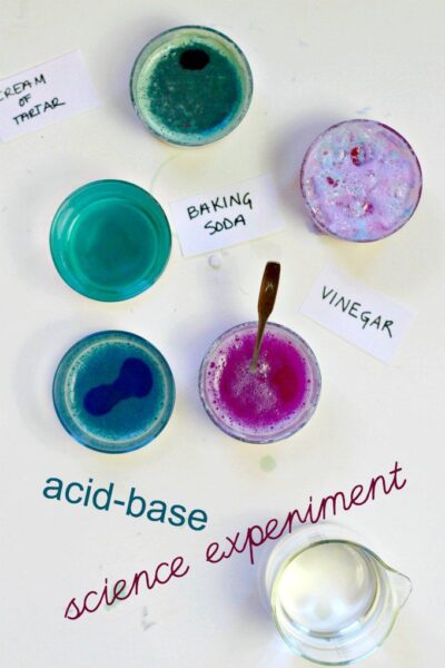 Cabbage juice indicator science experiment. Easy science to do at home for all ages.