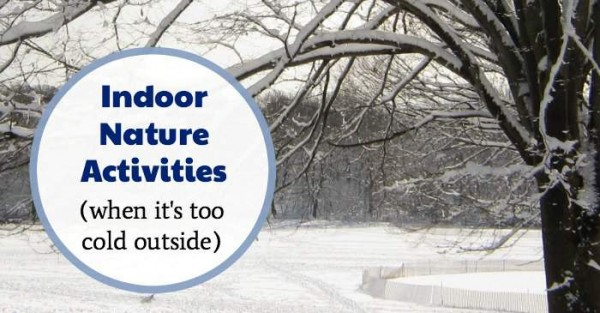 Fun and easy indoor nature activities for winter.