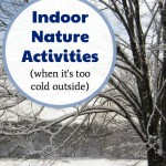 Indoor Nature Activities for Winter that Kids Love