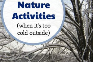 Indoor nature activities for kids in winter when you are stuck inside.