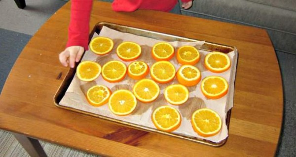 Orange slices to dry as an indoor nature activity for kids in winter.