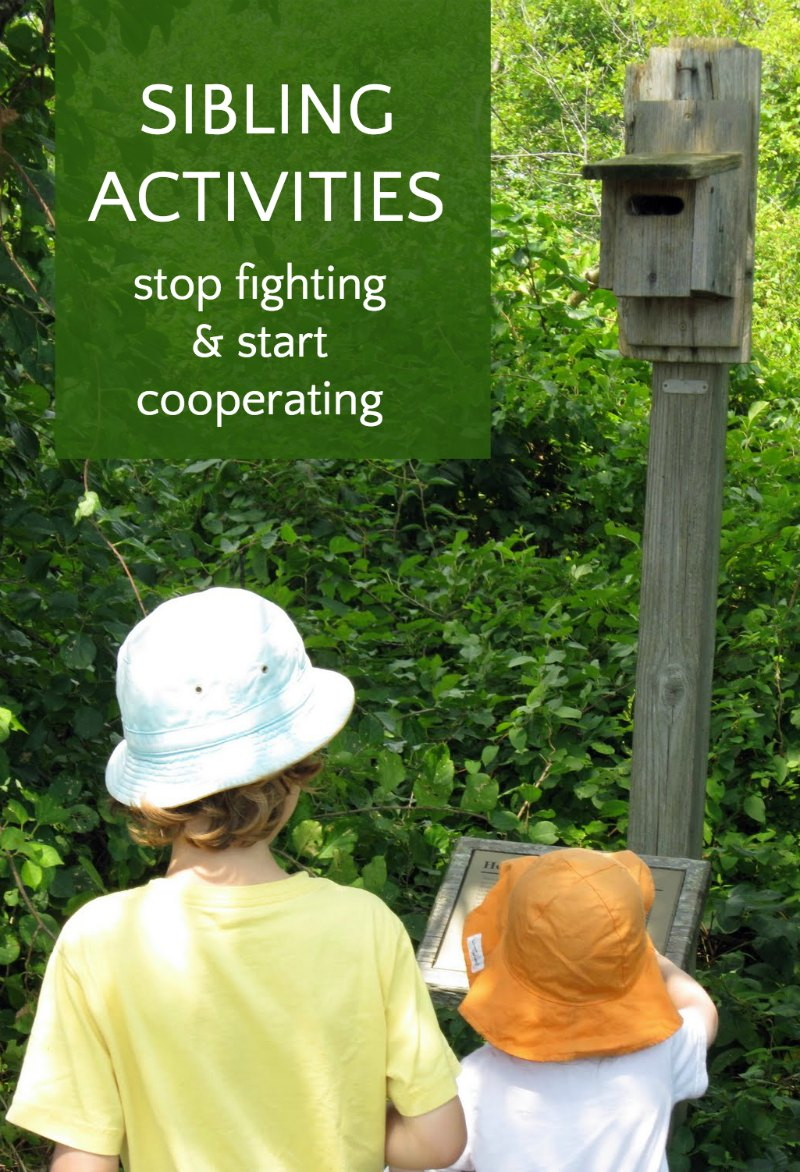 Sibling activities to stop fighting and promote cooperation