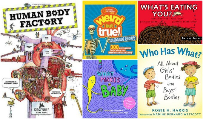 Human biology picture books for kids