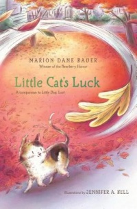 Little Cat's Luck book cover