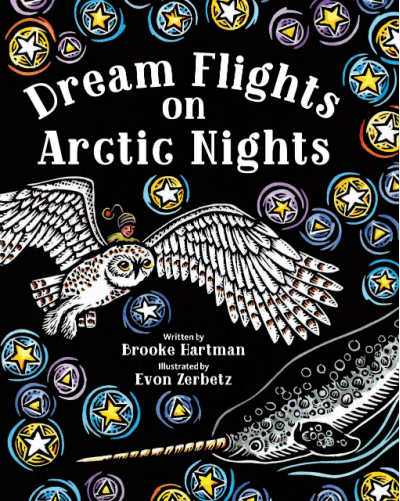dream flights rhyming book with owl in flight on cover