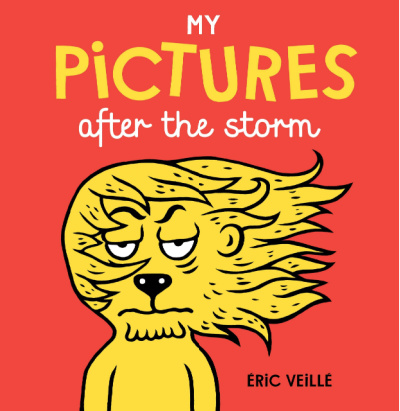 my pictures after the storm book cover