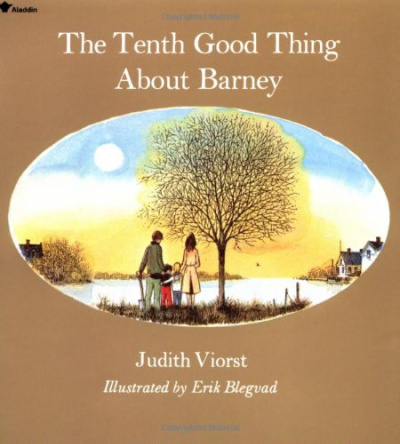 the tenth good thing about barney book cover