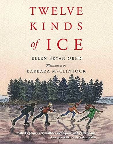 12 kinds of ice book cover