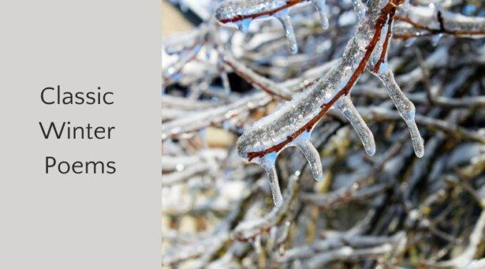 classic winter poems and icy branches