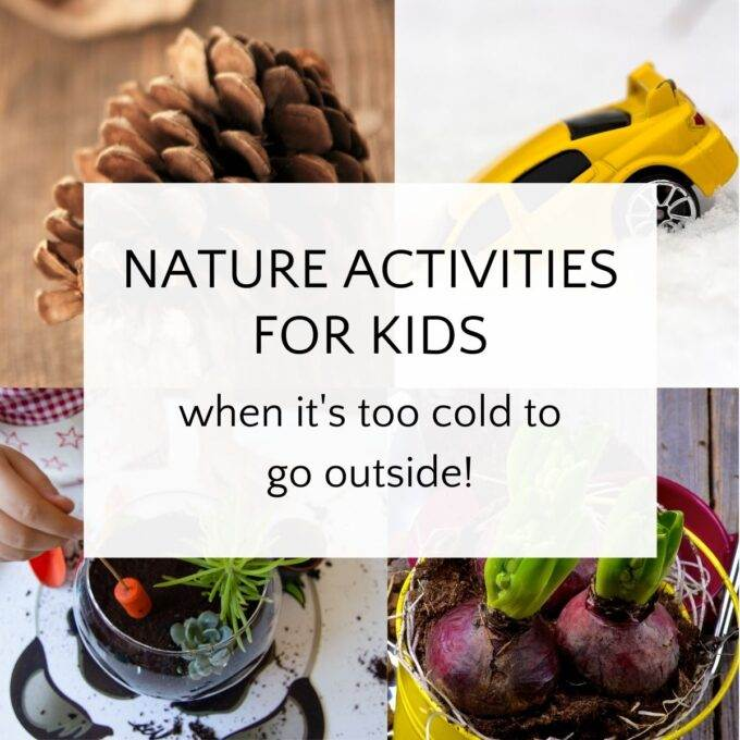 ideas for indoor nature activities with pinecone, snow, indoor planting