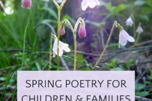 Pink spring blossoms in forest with text spring poetry for children and families